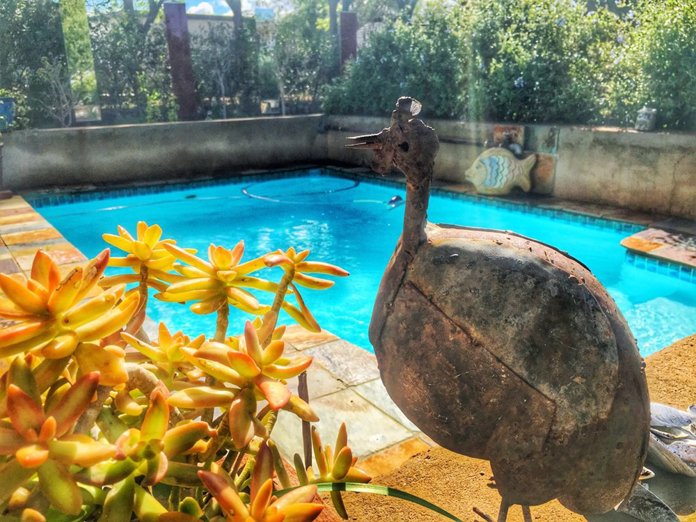 Steytlerville accommodation swimming pool